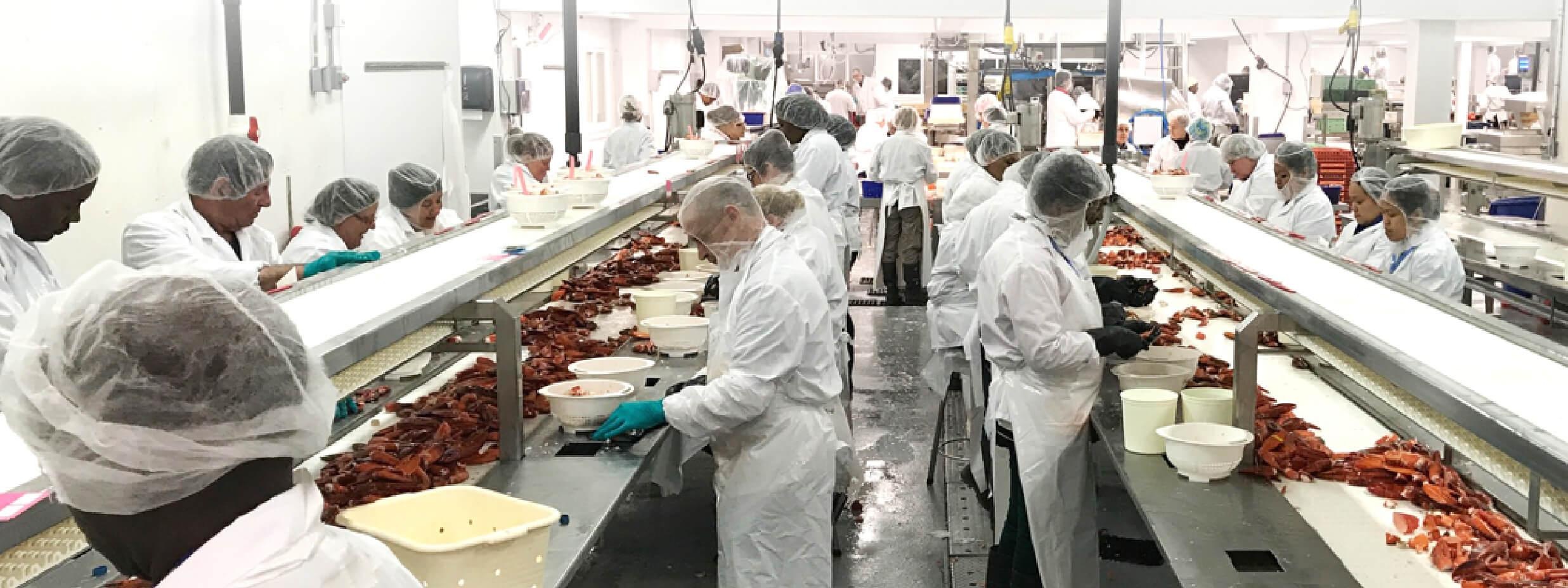 Workers inside the factory
